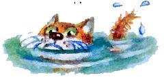 кот в воде