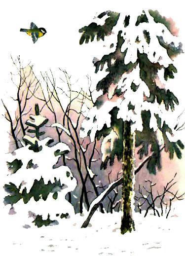 Синичка в заснеженом лесу