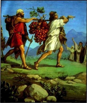 Соглядатаи в Ханаане виноградная гроздь