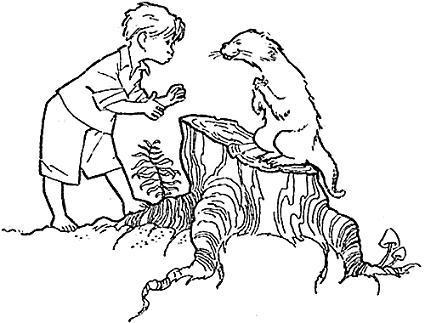 мальчик Лёня и зверек