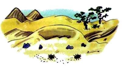Сурикаты-сумасброды. Невероятно смешные приключения в пустыне