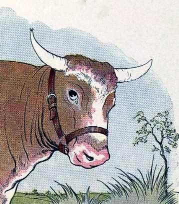 http://www.planetaskazok.ru/images/stories/ezop/4/the-gnat-and-the-bull.jpg