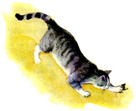 рисунки кошка ловит мышку
