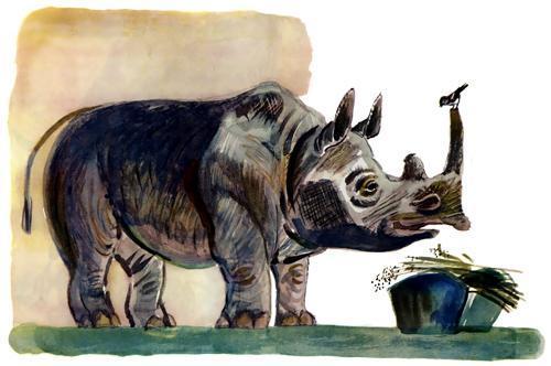 воробей и носорог
