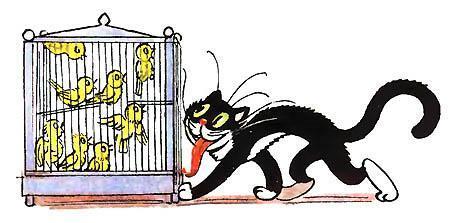кот крадется к клетке с птицами