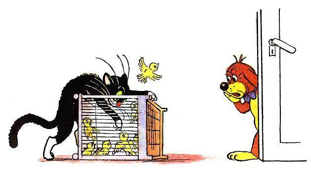 кот ворует птиц из клетки Пиф