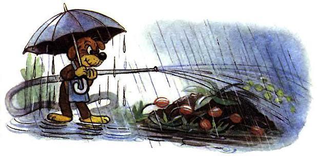 Пиф поливает цветы в дождь