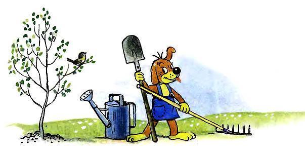 Пиф в саду с лопатой и граблями