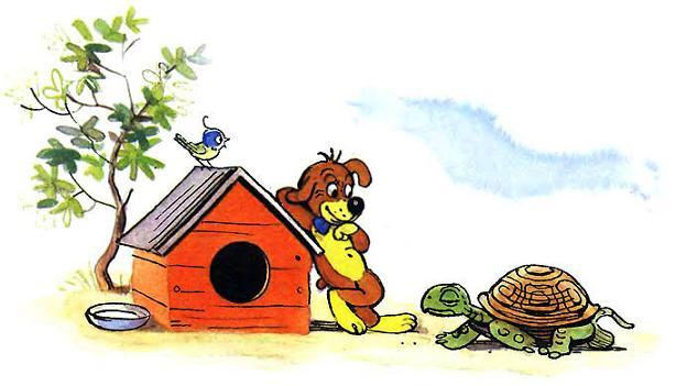 Пиф и черепаха