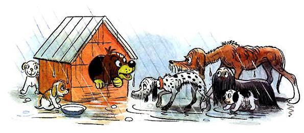 Пиф в будке собаки под дождем