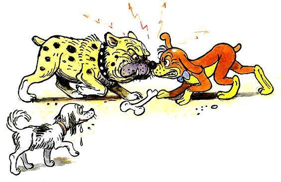 Пиф и пес ссора из за кости