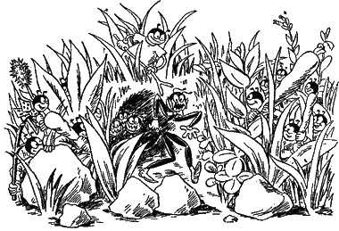 Муравьи подстерегают засада