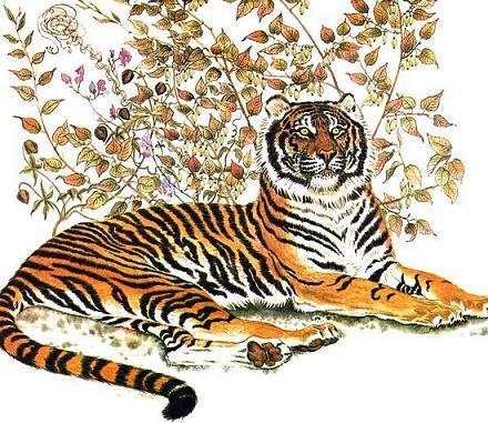 Тигр берет в рот