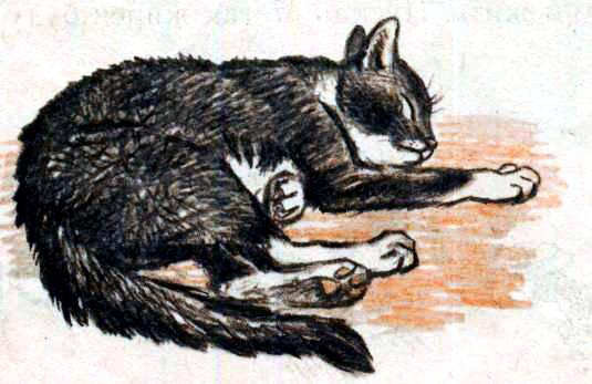 Басня л.н.толстого кот с бубенцом